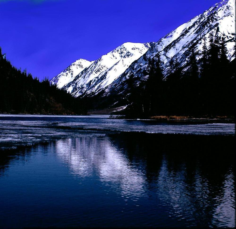 BLUE LAKE WILDERNESS by RoseMarie747