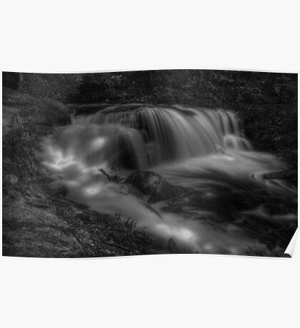 Ragin' Cayuga Falls Poster