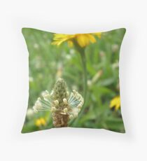 Macro madness - The simple things Throw Pillow