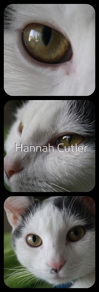 Kitty Combined by Hannah Cutler