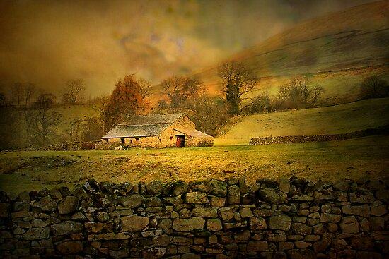 The Barn.! by Irene  Burdell