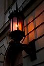 late afternoon sunlit lamp by dedmanshootn
