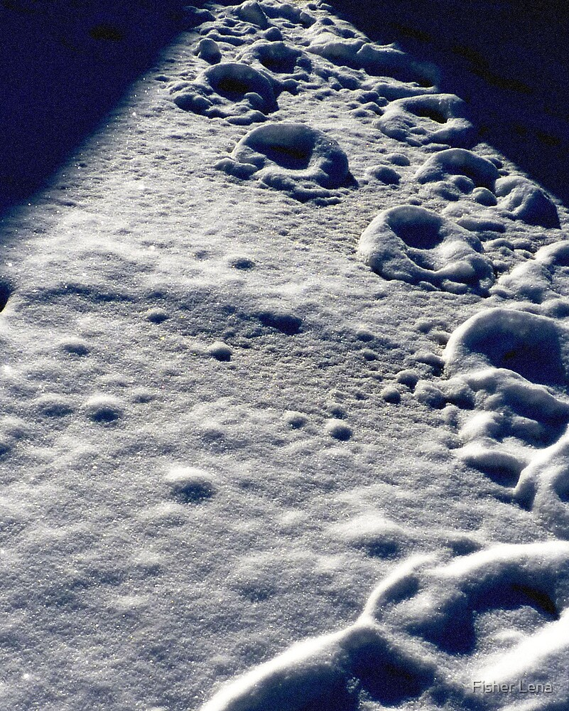 footsteps in the snow by Fisher Lena