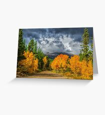 Changing Of The Colors - Colorado's New Coat Greeting Card