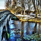5 Arches In Snow HDR by davesphotographics