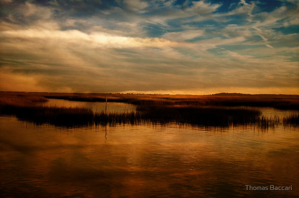 Peaceful Evening by TJ Baccari Photography