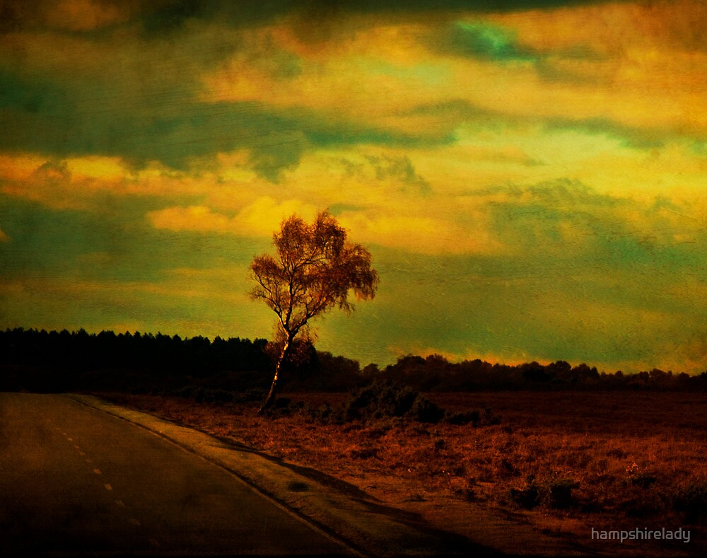 The Roadway to Where by hampshirelady