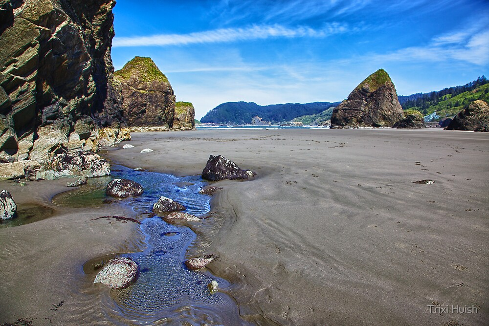 Myers Beach Tide Pool 1 by Trixi Huish