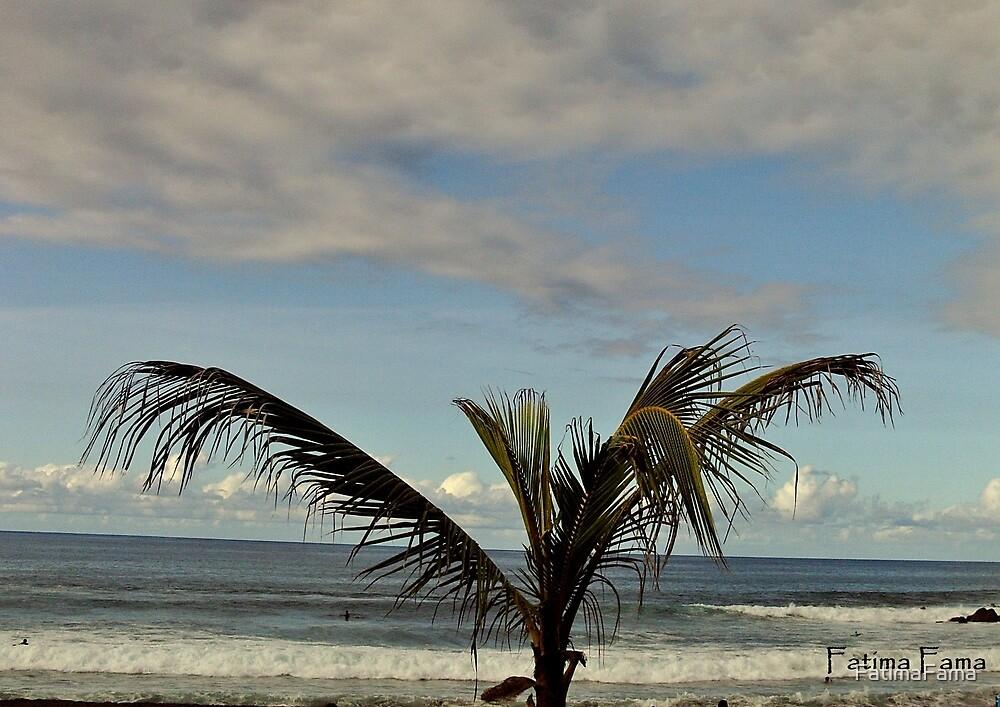 Playa de Jardin, Puerto de la Cruz by FatimaFama
