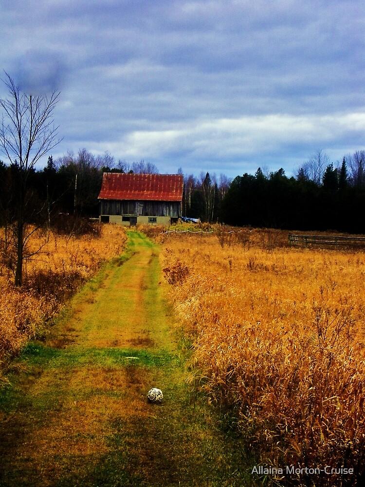 Storm on the Farm by Allaina Morton-Cruise