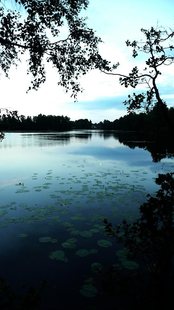 Sweden at Dusk  by lee1112