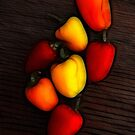 Miniature Pepper Fiesta by Francine Dufour Jones
