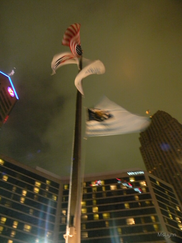 Windy Night  by MsLynn