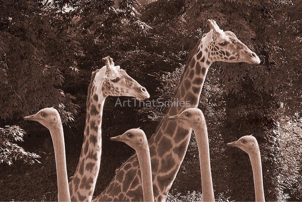 """""""Neck Parade"""" - giraffes and ostriches parading? by ArtThatSmiles"""