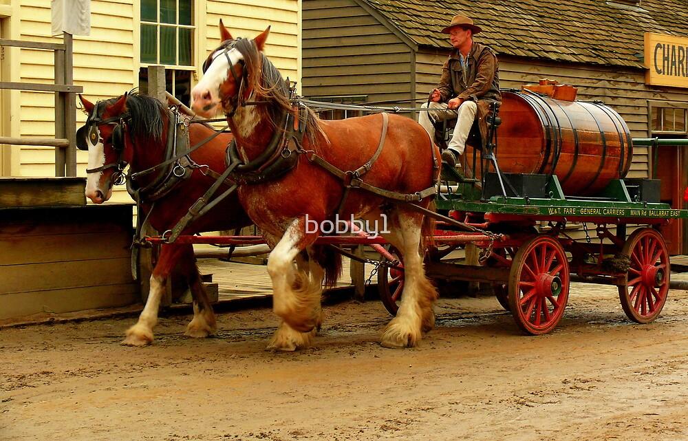 Draught horses by bobby1