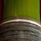 Striped Palm by David Mellor