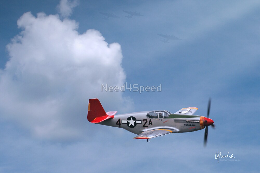 Red Tails 'By Request' by Need4Speed