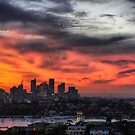 Sydney sunset panorama by andreisky