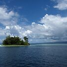 Kennedy Island by Reef Ecoimages