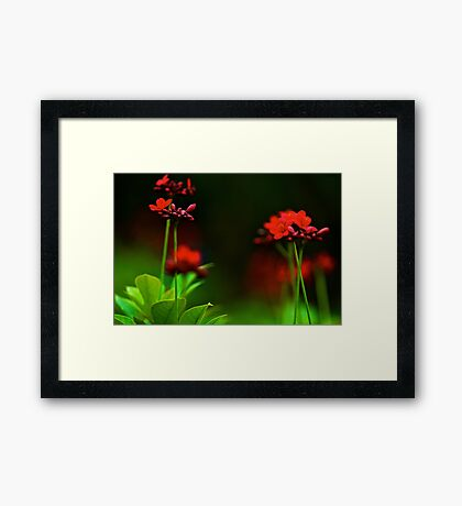 Mute field: On featured: A-place-to-start-no-other-group Framed Print