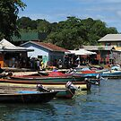 Longboats at Gizo by Reef Ecoimages