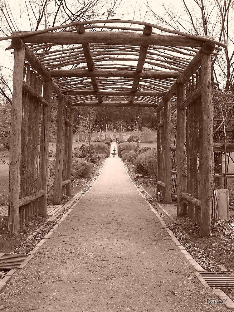 Pathway to Home, Port Arthur, Tasmaina by DaveZ