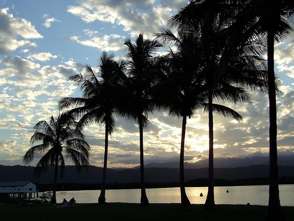 palm sunset port douglas by gary kurzer