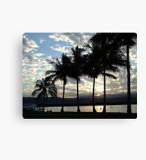 palm sunset port douglas Canvas Print
