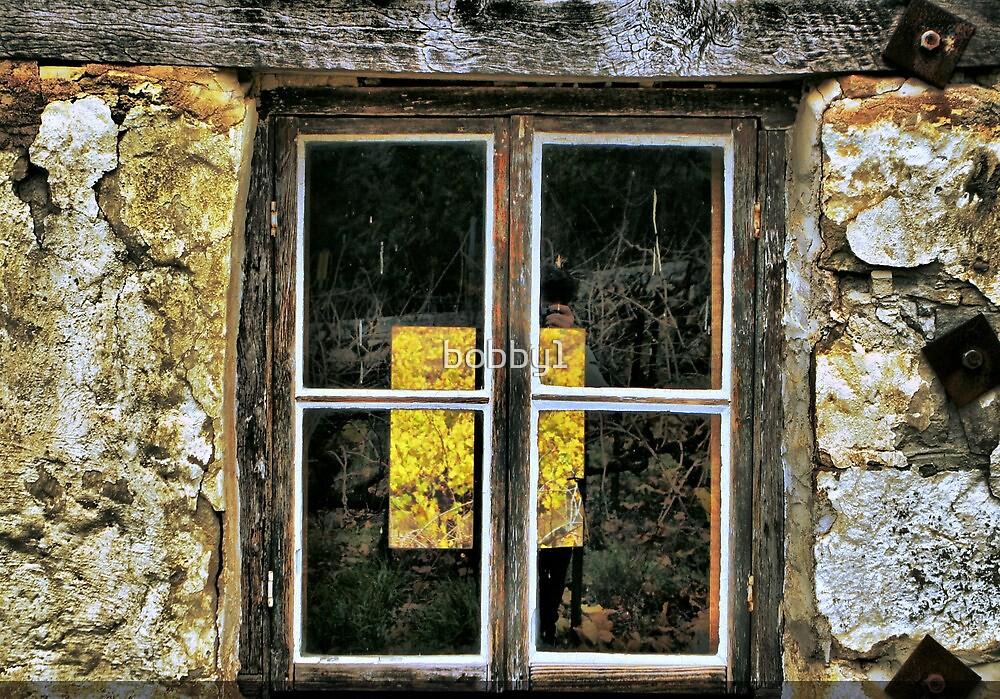 Window 3# by bobby1