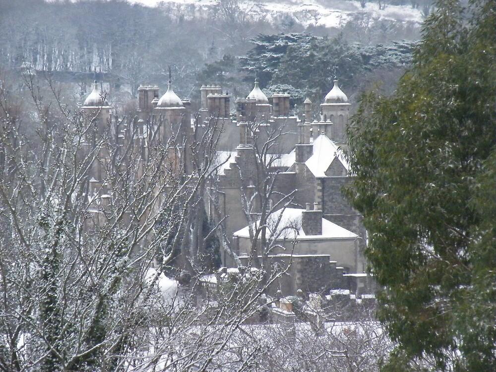 Glenarm Castle  by Graham McMullan