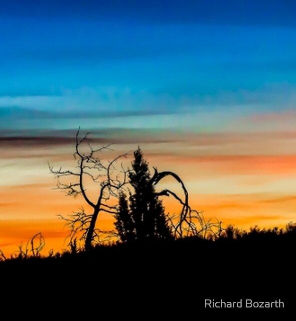 Redmond Sunrise 102 by Richard Bozarth