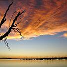 Belmont Bay Sunset NSW Australia by Bev Woodman
