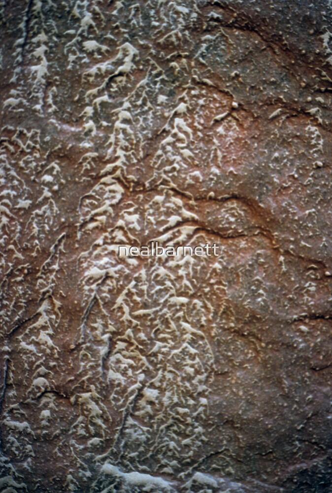 reticulated erosion pattern by nealbarnett
