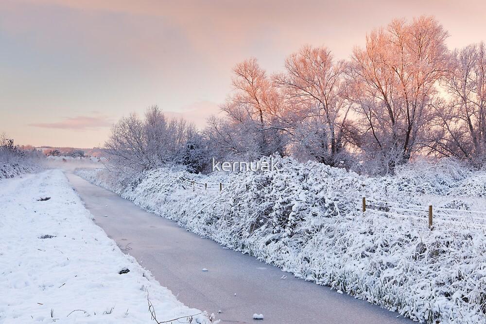 Dawn Light over Wembdon Rhyne by kernuak