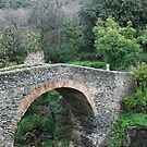 roman bridge by Kent Tisher
