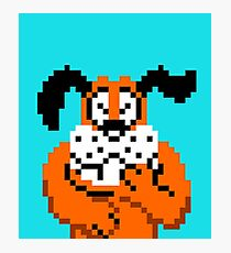Duck Hunt Photographic Print