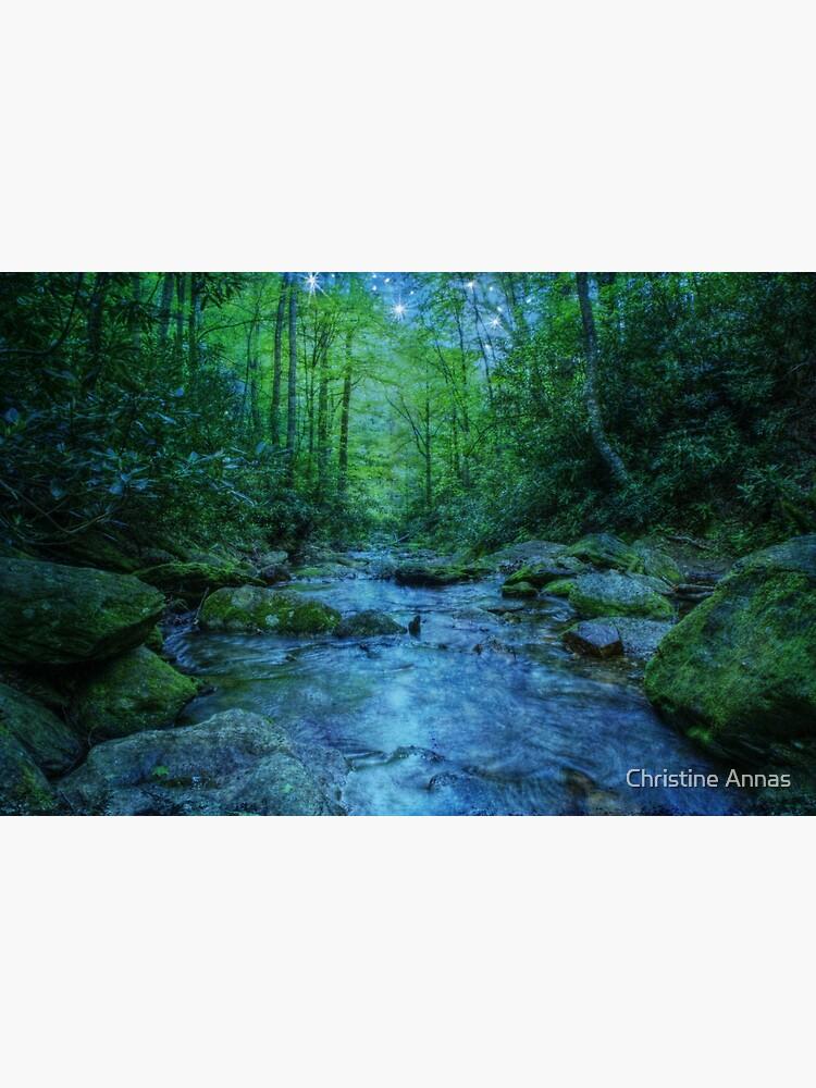 River of Dreams by 2Bricks