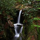 Duggers Creek Falls by Christine Annas