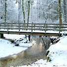 Bridge over Bartley Water in Winter by Gordon Hewstone