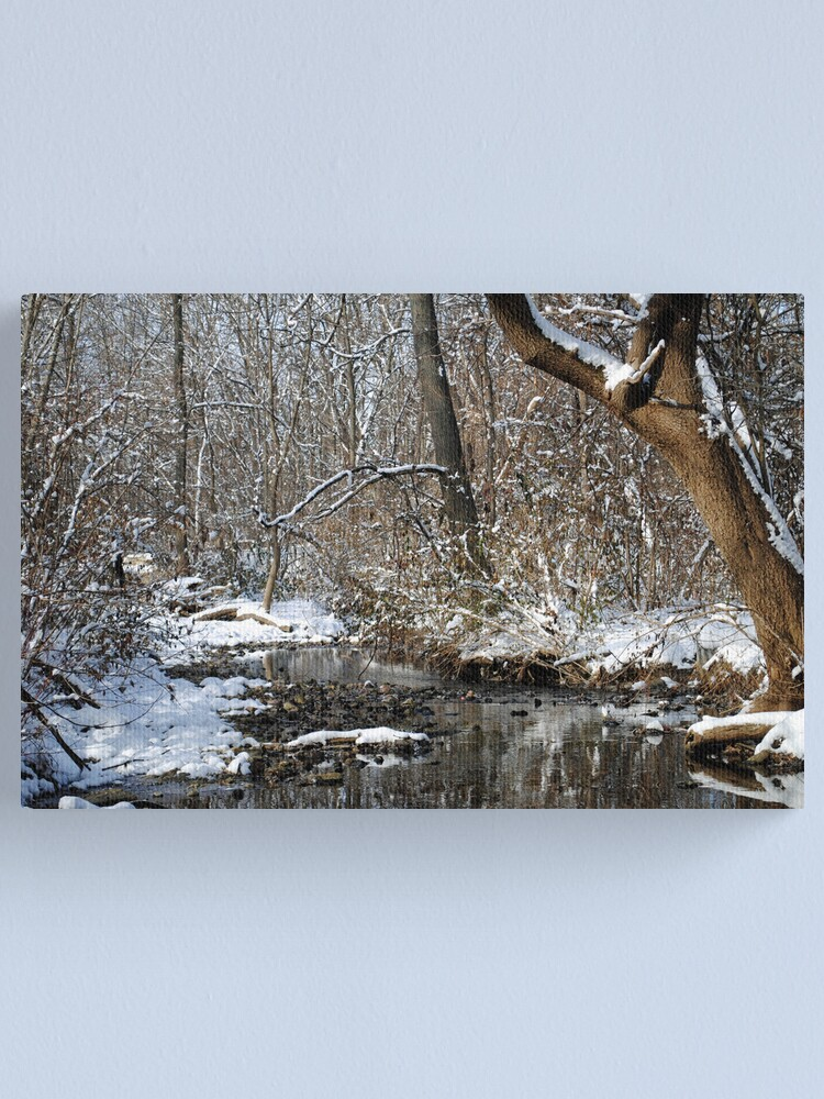 Alternate view of After the Snowstorm Canvas Print