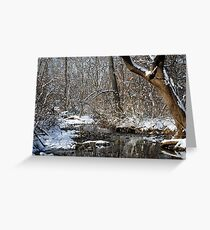 After the Snowstorm Greeting Card