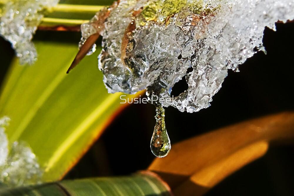 Icy Tears by Susie Peek