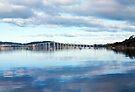 Tasman Bridge from Cornelian  Bay by Odille Esmonde-Morgan