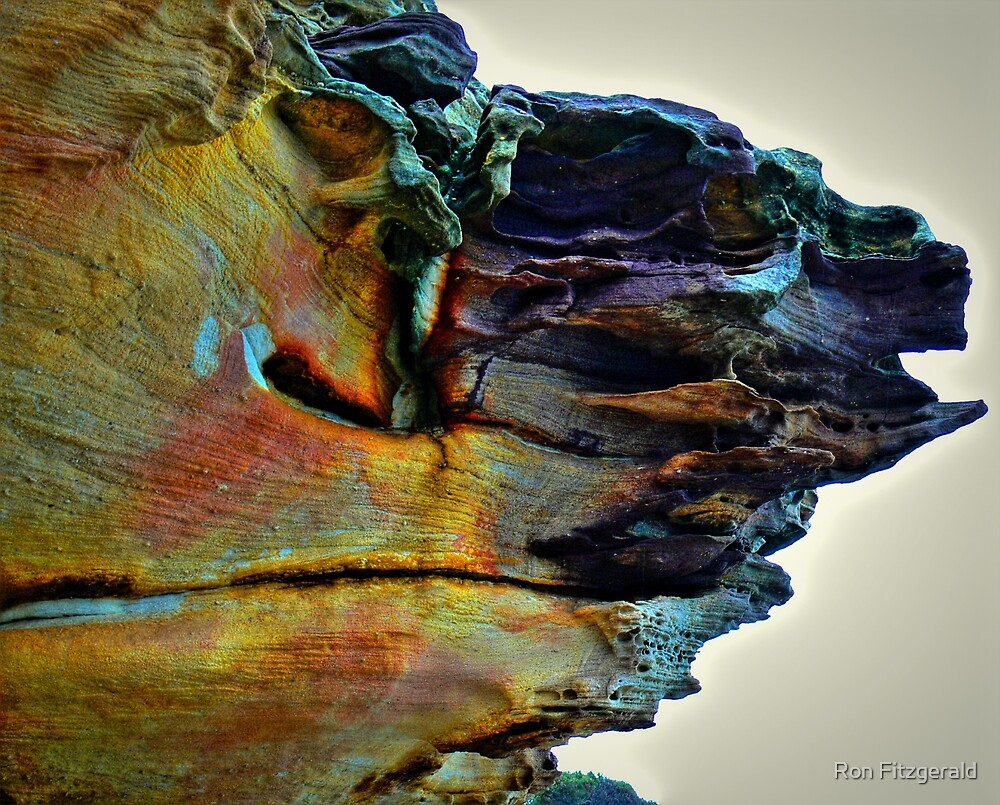 Sydney Coastline, Colours of Sandstone by Ron Fitzgerald