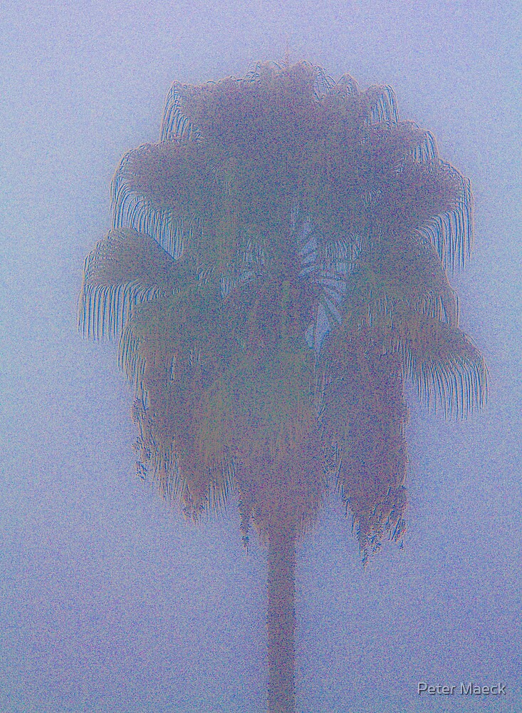 Foggy Morning, Los Angeles by Peter Maeck