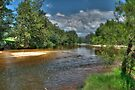 Grose River, Navua Reserve by Terry Everson