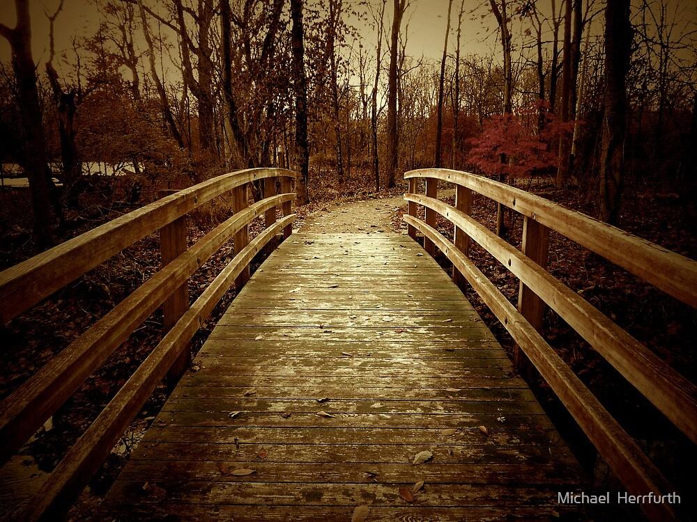 The Bridge by Michael  Herrfurth