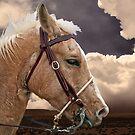 On The Prairie by George Lenz