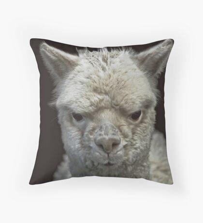 Grumpy Alpaca Throw Pillow