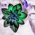 Photoshopped Flower 3 by Yvonne Carsley